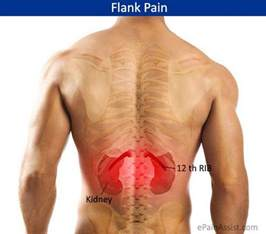 flanking back pain with hydroxycut picture 1
