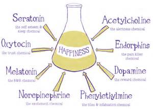 how does oxytocin reduce stress picture 5