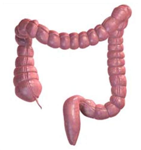 compare colon cleanses picture 13