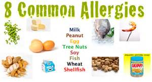 allergies and diet picture 1
