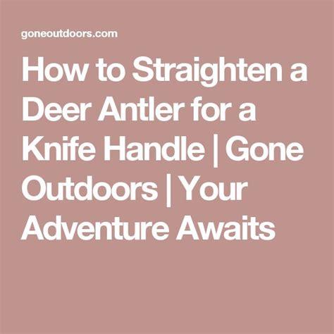 straighten deer antler picture 1