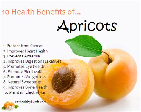 apricots health picture 1
