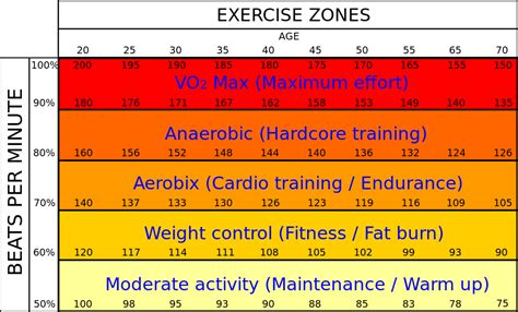 fat burning zone picture 1