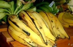 banana plantain varieties picture 5
