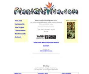 microsorum scolopendrium plantzafrica picture 5
