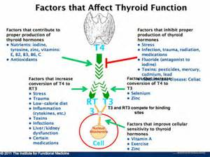 low active thyroid picture 3