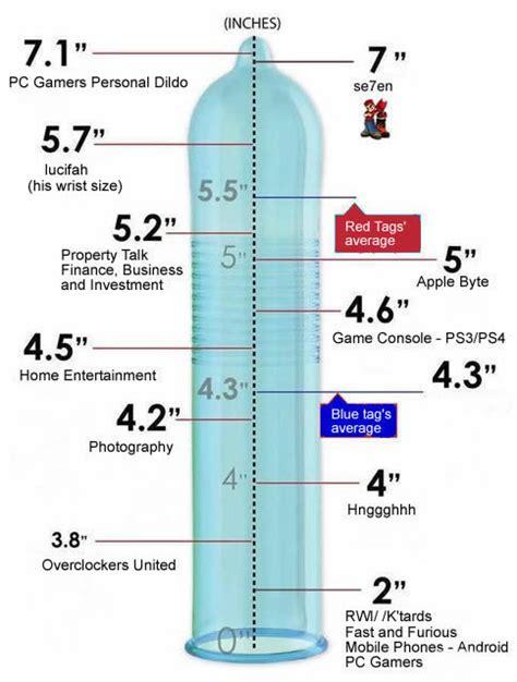 men's penis size in quito, ecuador picture 10