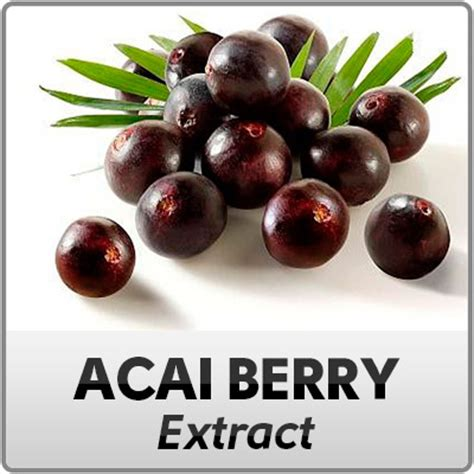 acai berry for animals picture 5
