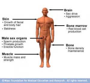 testosterone natural therapy picture 1