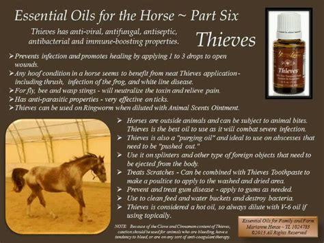 oils to mimic prednisone picture 10