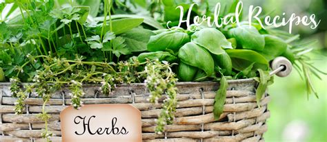 herbal living picture 2