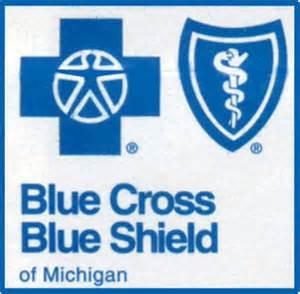 blue cross&blue sheild child health plus picture 2