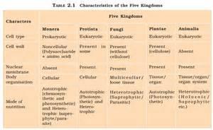 characteristics of fungi kingdom picture 7