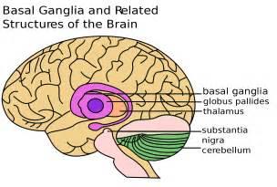when brain tumor causes insomnia picture 11