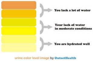 intense dream about urinating and then urinating while picture 5