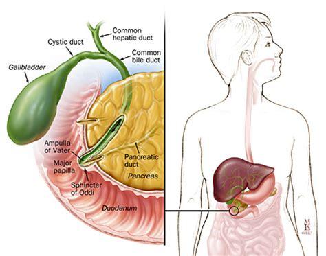 spastic bladder picture 17