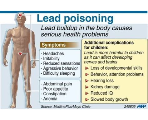 diet for lead poisoning picture 3