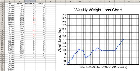 weight loss graph templates picture 7