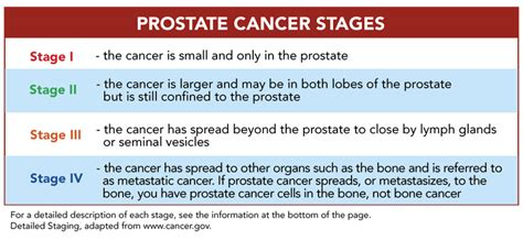 Prostate cancer stages picture 7