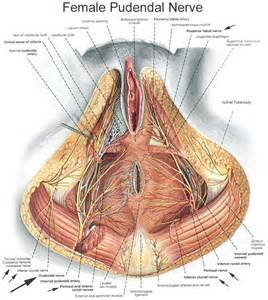 benefits of male urethral sounding picture 5