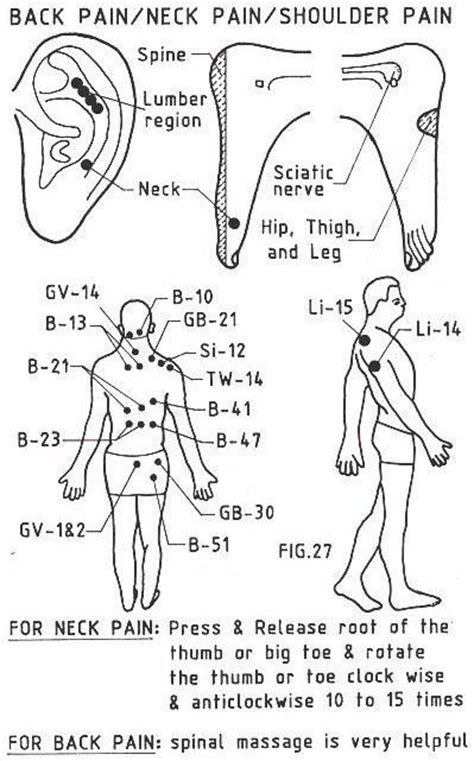 acupressure points for pelvic muscle spasms picture 3