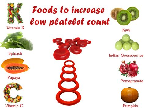 diet tips for raising white blood count picture 3
