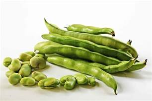 what will kill virus on green beans picture 7