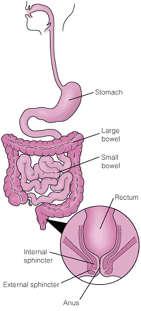 constipation and colon diseases picture 13
