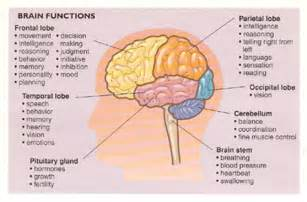 benign brain tumors and blood pressure picture 2