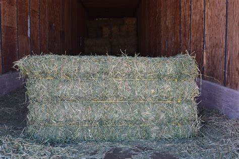 3 string alfalfa bales for wholesale in texas picture 8