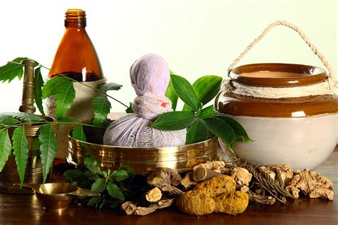 about ayurvedic chilgonzo and its uses picture 1