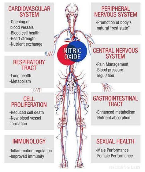 liquid nitro herbal sex aid picture 14