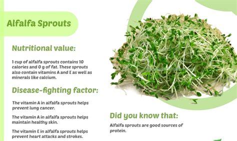 benefits of alfalfa picture 10