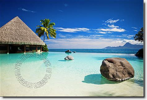 cambogia en panama picture 2