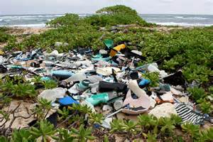 marine debris awareness picture 10