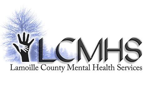 vermont mental health services picture 1