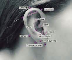 weight loss staples ear picture 13