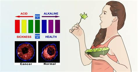 daily diet for cancer patients picture 14