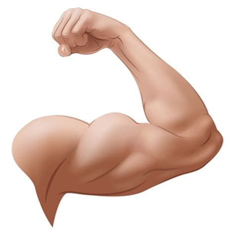 muscle free picture 6