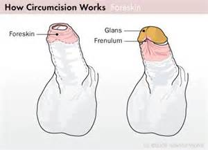how to improve penis skin picture 17