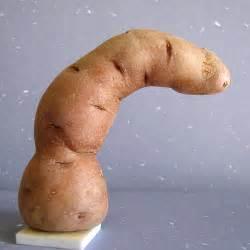 unusual penis pics picture 2