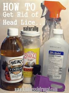 overnight acne cures picture 19