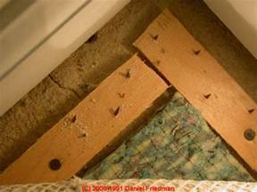 side effects of puting on the mold that picture 22