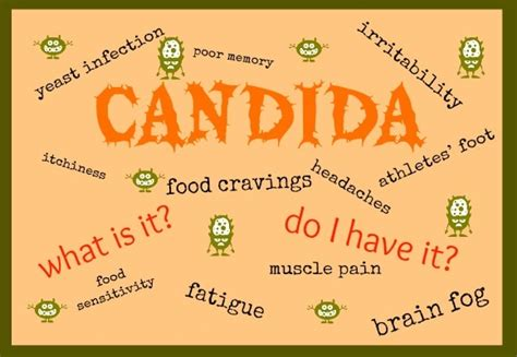 systemic candida oxyflush reviews picture 17