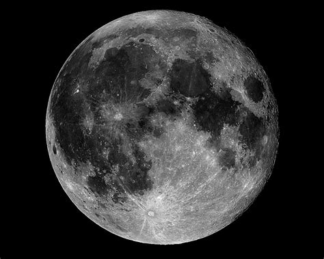 herbal supplement to take day after full moon picture 10