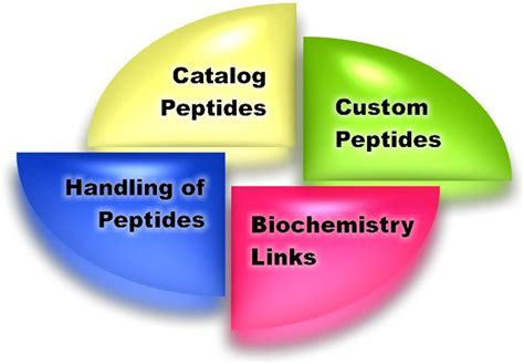 peptide for increased libido picture 11