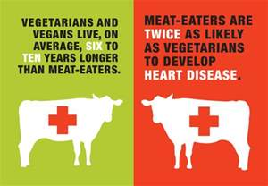 vegetarian health statistics picture 1