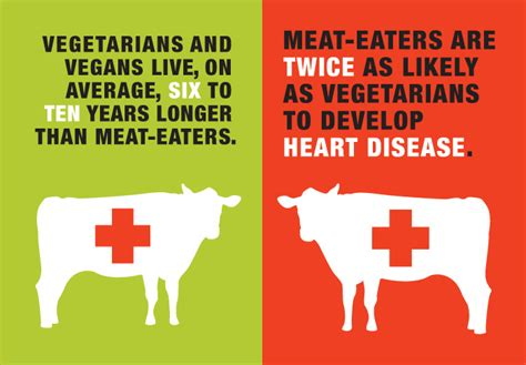 vegetarian health statistics picture 10