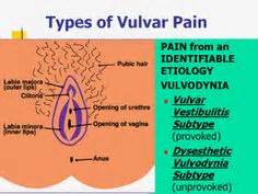 infectious vulvodynia picture 6