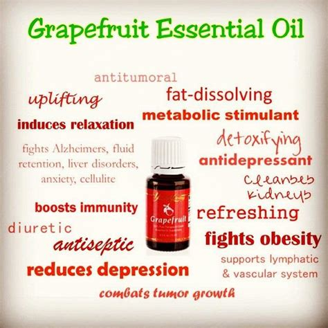 which essential oil dissolves fat on stomach picture 3